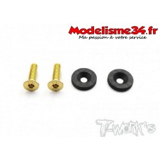 T-Work's Rondelles d'aileron carbone (2) MP9/ MP10 : TO-208